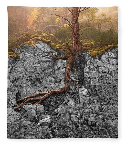 Taproot Fleece Blanket