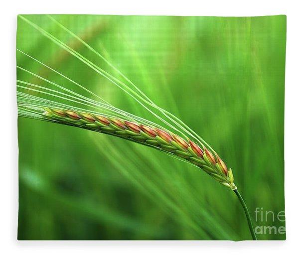 The Corn Fleece Blanket