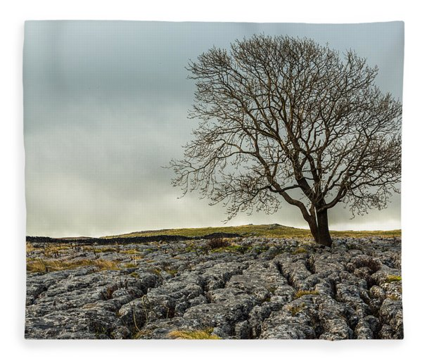 The Lonely Tree Fleece Blanket