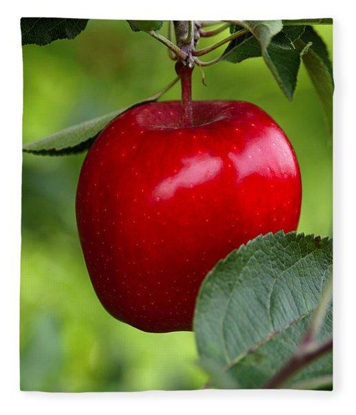 The Red Apple Fleece Blanket