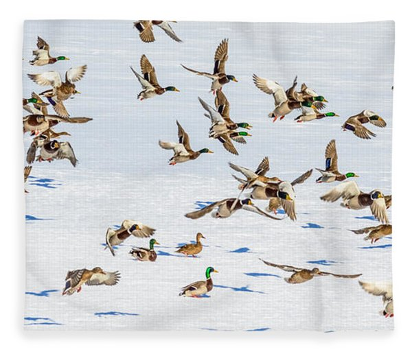 Fleece Blanket featuring the photograph The Takeoff by Garvin Hunter