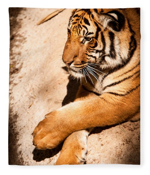 Tiger Resting Fleece Blanket