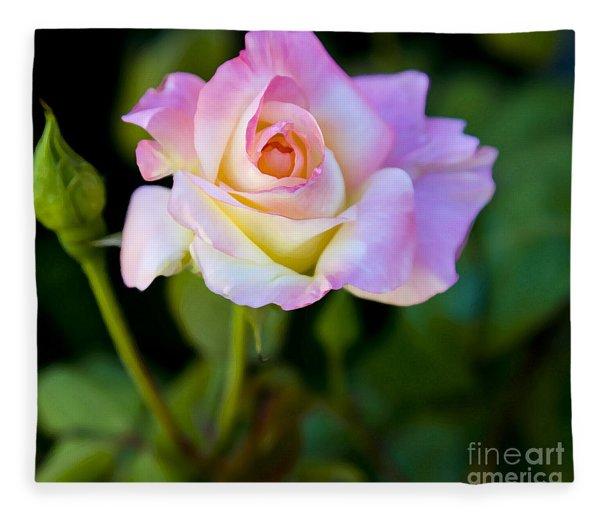 Rose-touch Me Softly Fleece Blanket