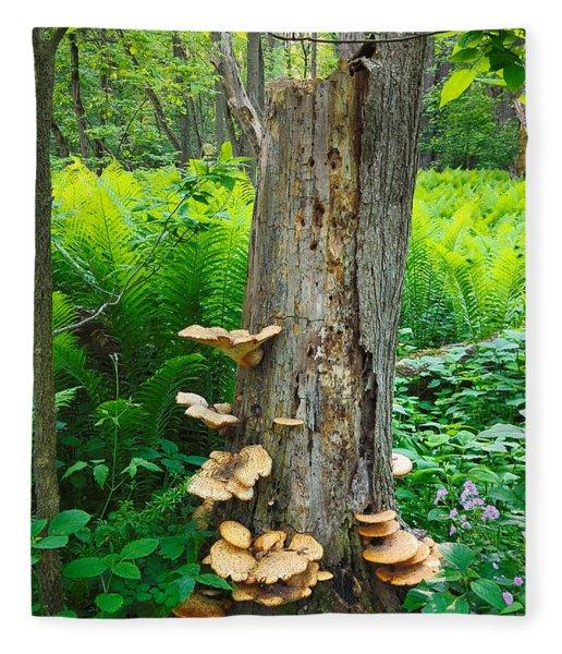Tree Remnant Fleece Blanket