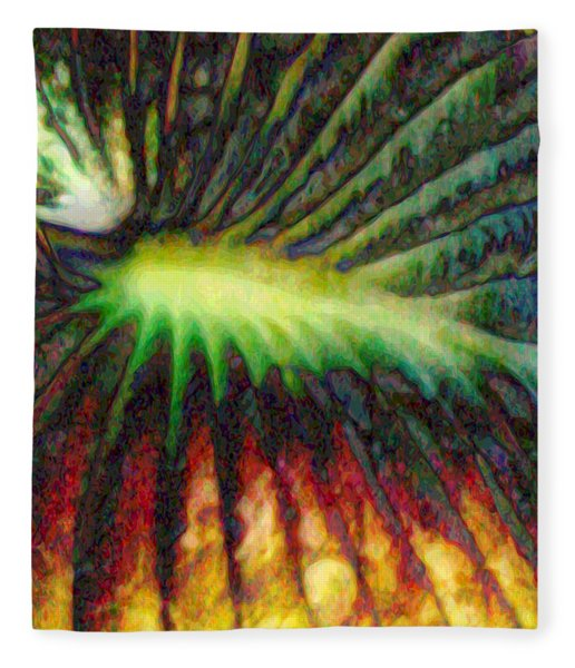 Fleece Blanket featuring the digital art Untitled 052712 by Matt Lindley