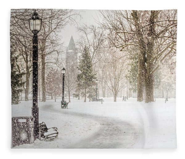 Fleece Blanket featuring the photograph Victoria Park by Garvin Hunter