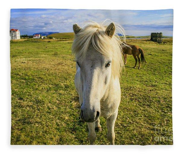 White Icelandic Pony Fleece Blanket
