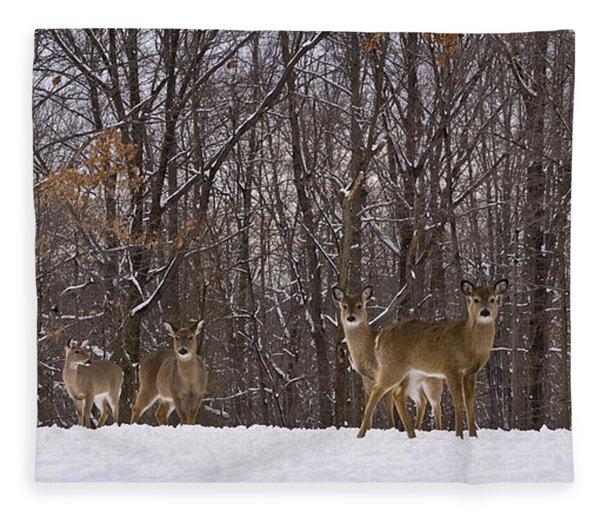 White Tailed Deer Fleece Blanket