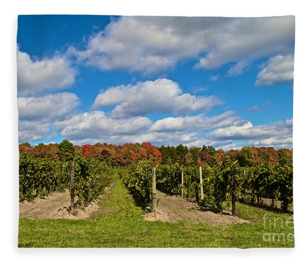 Wine In Waiting Fleece Blanket
