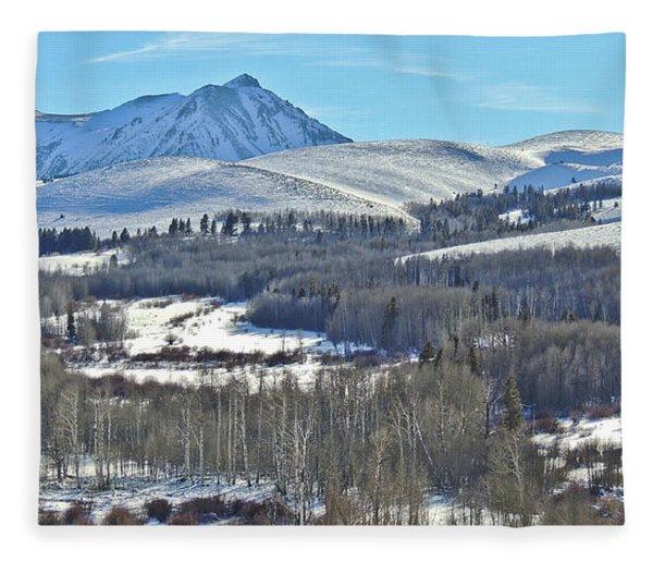 Winter Evening Aspen Fleece Blanket