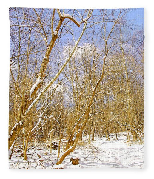 Winter Woods Digital Art Fleece Blanket