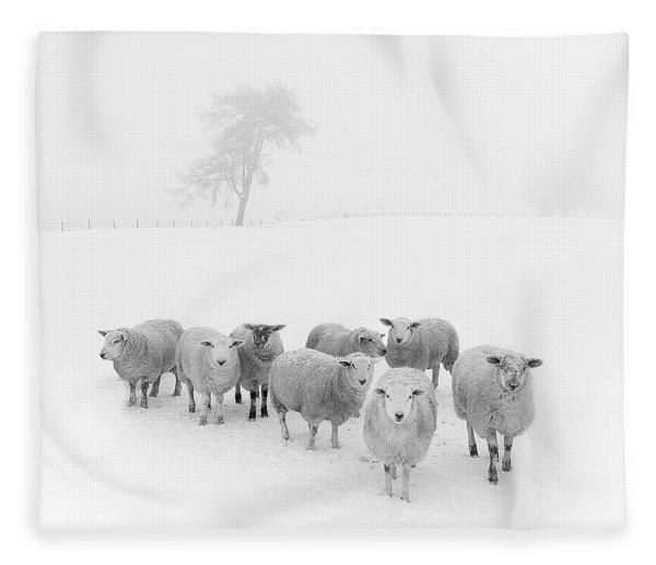 Winter Woollies Fleece Blanket