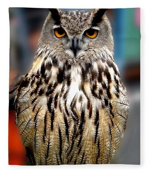 Fleece Blanket featuring the photograph Wise Forest Mountain Owl Spain by Colette V Hera  Guggenheim