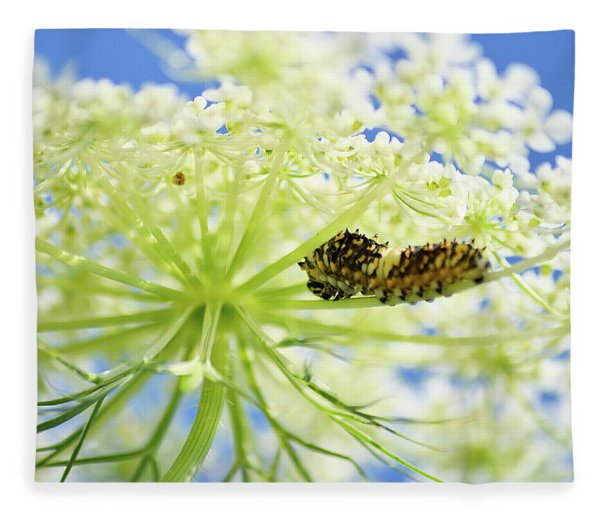 A Caterpillars Palace Fleece Blanket
