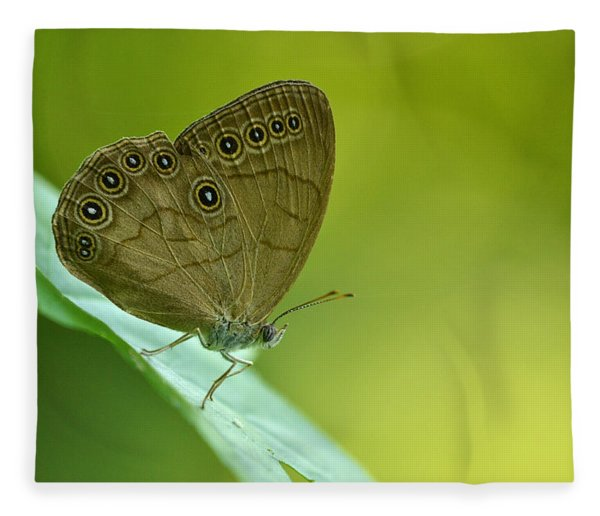Appalachian Brown Fleece Blanket