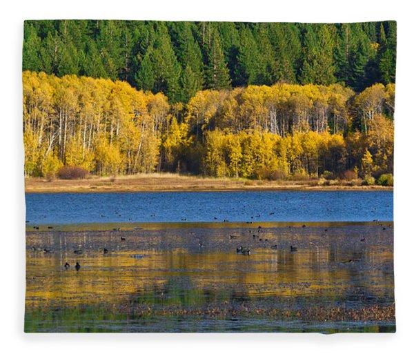 Aspen Gate Fleece Blanket