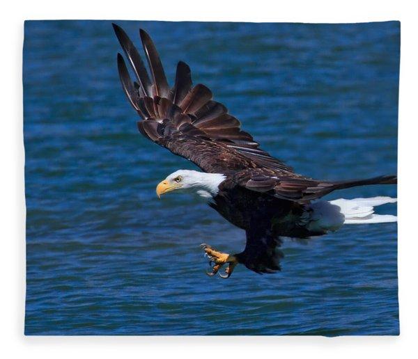 Bald Eagle On The Hunt Fleece Blanket