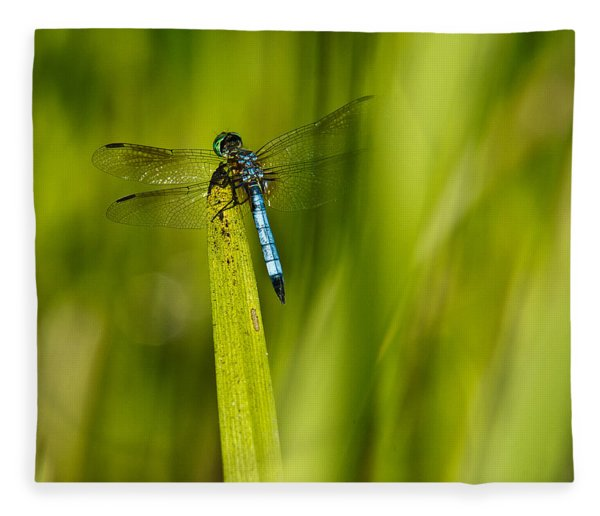 Blue Dragonfly 13 Fleece Blanket