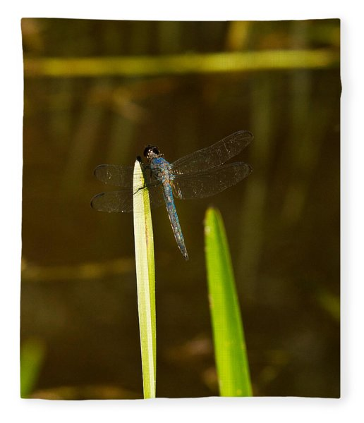 Blue Dragonfly 20 Fleece Blanket