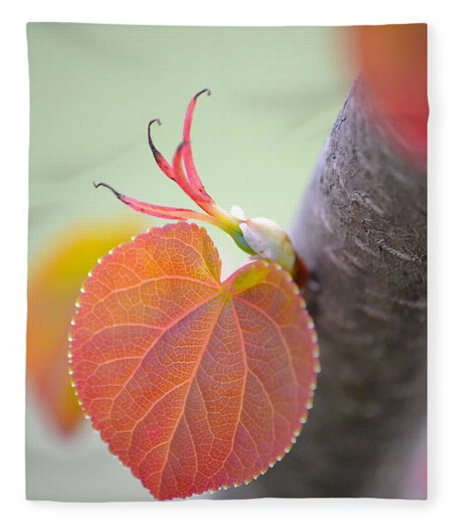Budding Heart Fleece Blanket