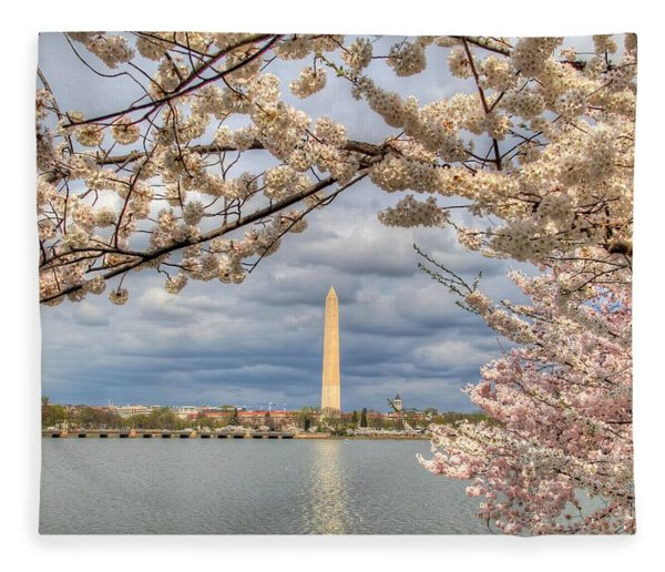 Cherry Blossoms Washington Dc 4 Fleece Blanket