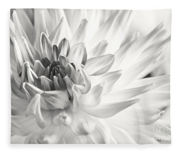 Dahlia Flower 02 Fleece Blanket