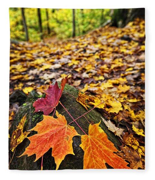 Fall Leaves In Forest Fleece Blanket