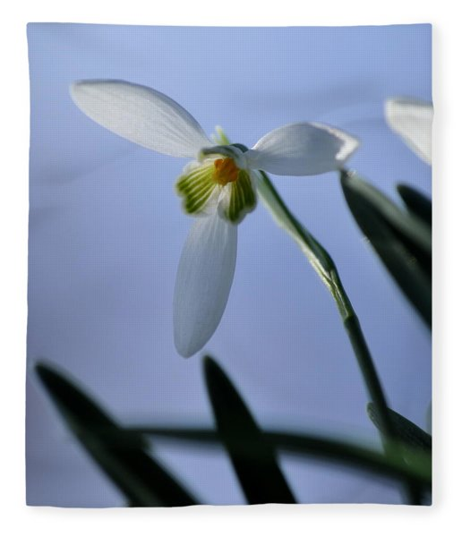 Giant Snowdrop Fleece Blanket