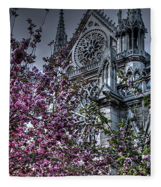 Gothic Paris Fleece Blanket