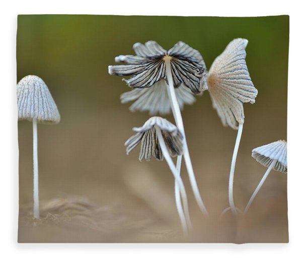 Ink-cap Mushrooms Fleece Blanket