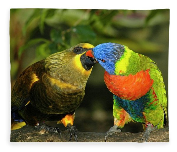 Fleece Blanket featuring the photograph Kissing Birds by Carolyn Marshall