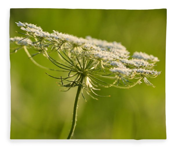 Lacy White Flower Fleece Blanket