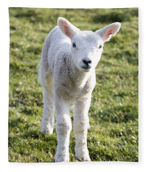 Little Lamb Fleece Blanket