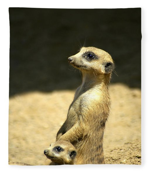 Fleece Blanket featuring the photograph Meerkat Mother And Baby by Carolyn Marshall