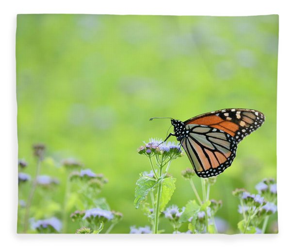 Monarch And Mist Fleece Blanket
