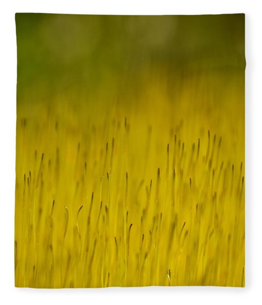 Moss In Yellow Fleece Blanket