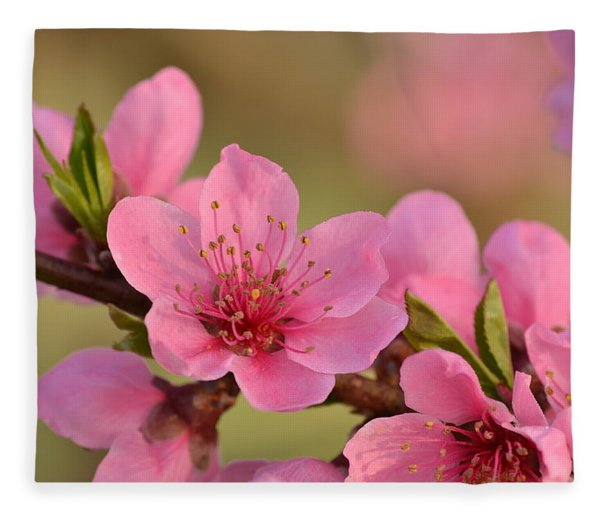 Peach Beautiful Fleece Blanket