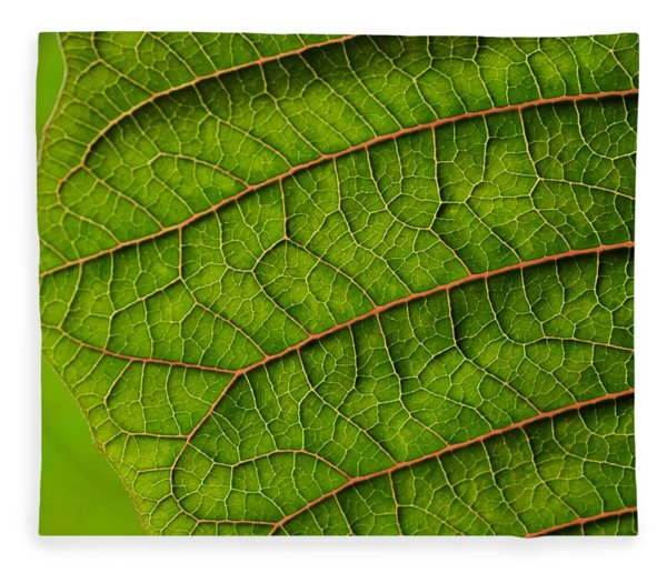 Poinsettia Leaf I Fleece Blanket