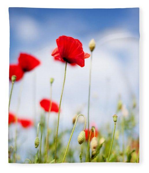 Poppy Flowers 06 Fleece Blanket