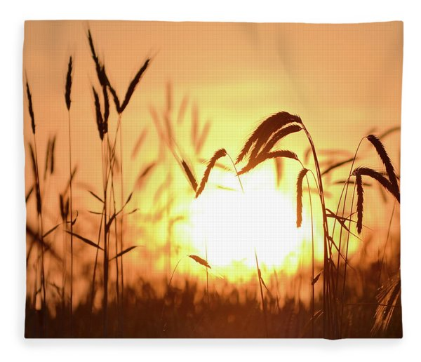 Sunset Rye IIi Fleece Blanket