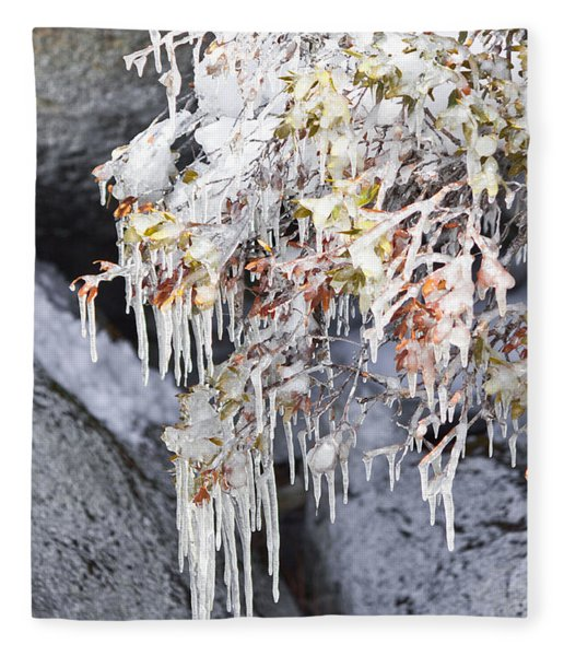 Tahoe Bush Icicles Fleece Blanket