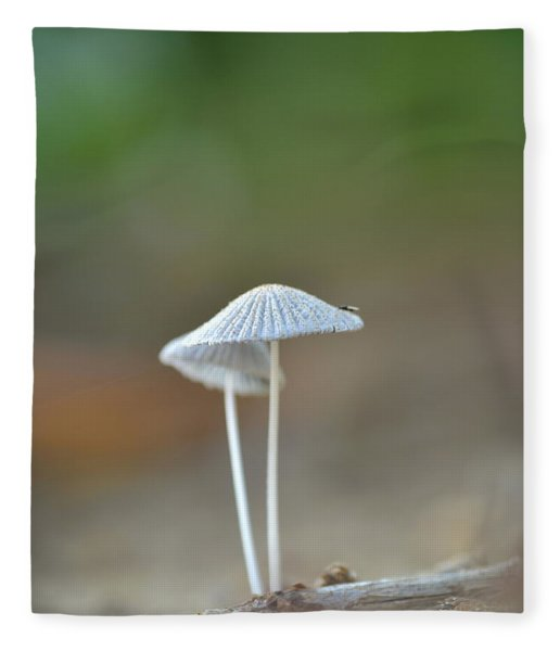 The Mushrooms Fleece Blanket