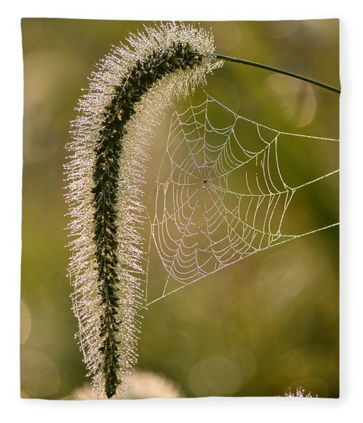 Webbed Tail Fleece Blanket