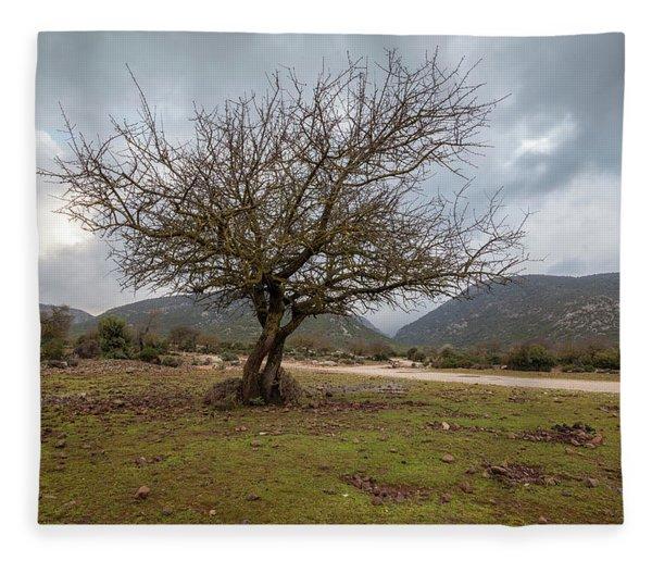 Dry Tree Fleece Blanket