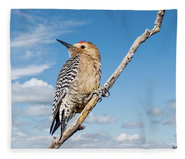 Male Gila Woodpecker Fleece Blanket
