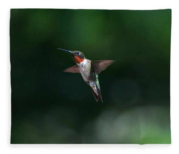 Male Ruby Throated Hummingbird Fleece Blanket