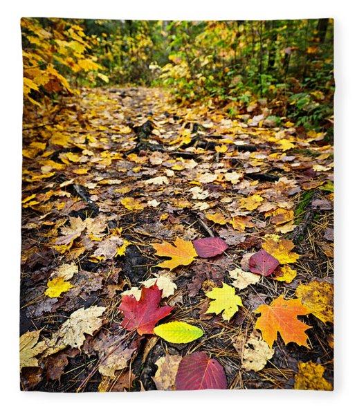 Path In Fall Forest Fleece Blanket