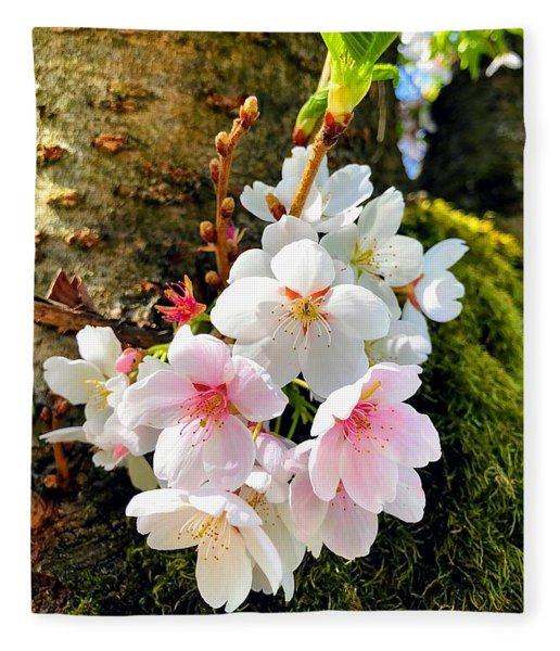 White Apple Blossom In Spring Fleece Blanket