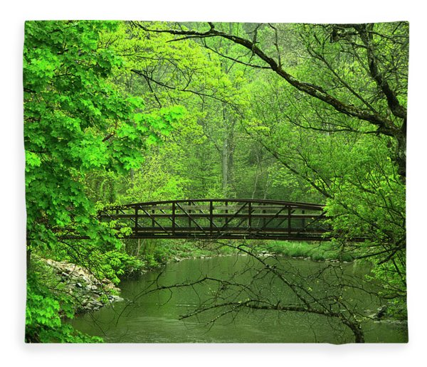 Fleece Blanket featuring the photograph Jacobsburg State Park Pa by Raymond Salani III