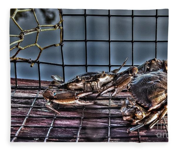 2 Crabs In Trap Fleece Blanket